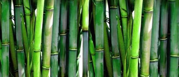bamboo-pillowcase