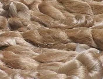muga-silk